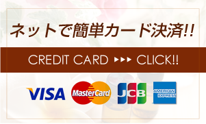 各種クレジットカードがごり利用頂けます